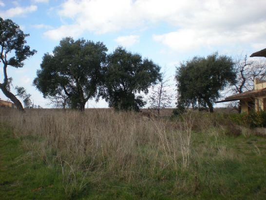 Terreno Edificabile Residenziale in vendita a Gavorrano, 9999 locali, zona Zona: Bagno di Gavorrano, prezzo € 210.000   Cambio Casa.it