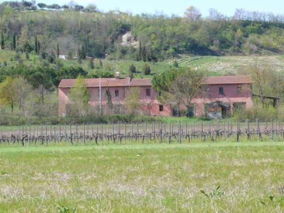 Azienda Agricola in Vendita a Castelfiorentino