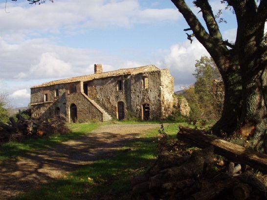 Azienda Agricola in Vendita a Monterotondo Marittimo