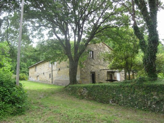 Azienda Agricola in vendita a Monterotondo Marittimo, 9999 locali, prezzo € 600.000 | CambioCasa.it