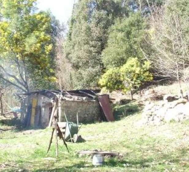 Altro in vendita a Roccastrada, 9999 locali, prezzo € 55.000 | Cambio Casa.it