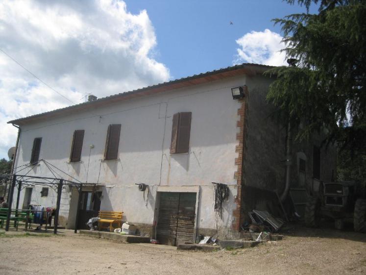 Azienda Agricola in Vendita a Campagnatico