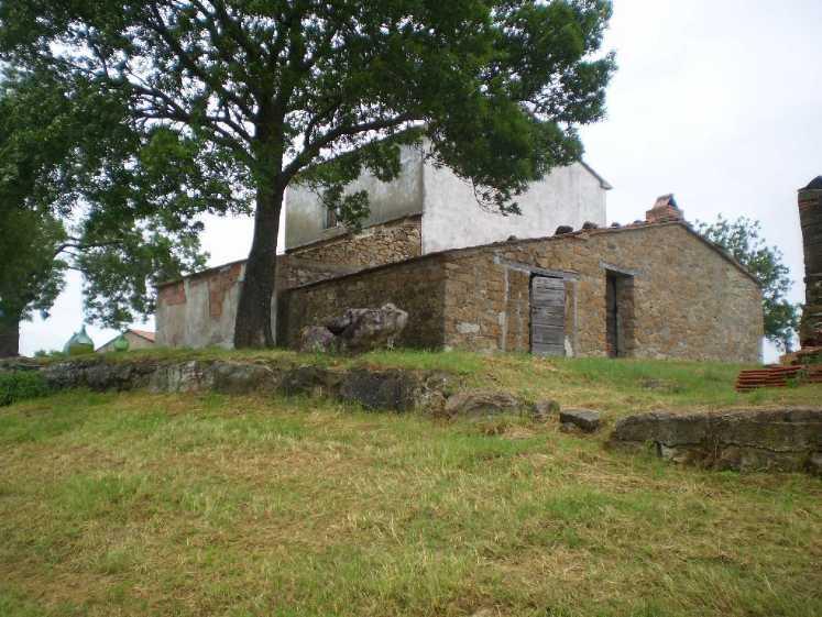 Azienda Agricola in Vendita a Scansano
