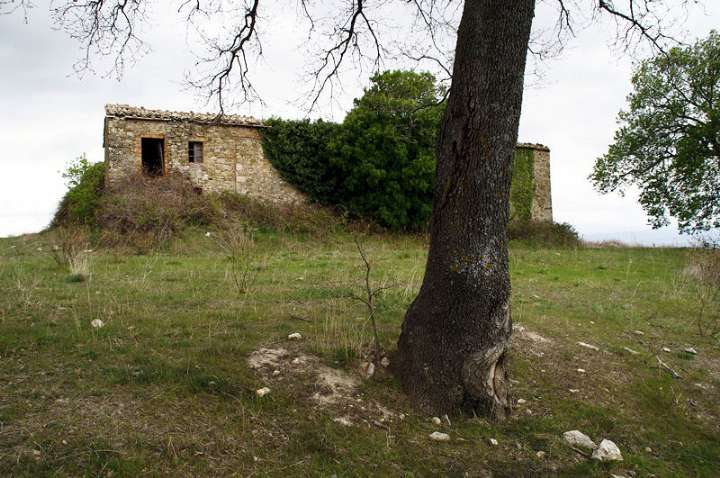 Azienda Agricola in Vendita a Cinigiano