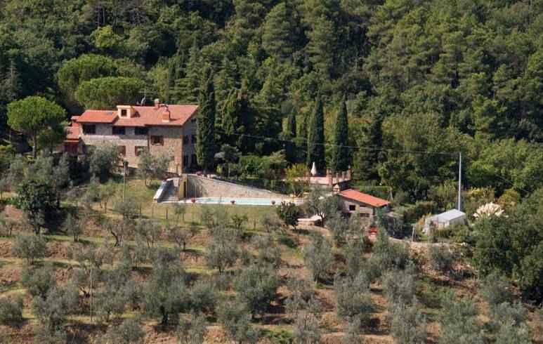 Azienda in Vendita a Arezzo: 450 mq