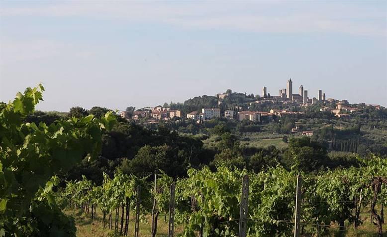 Azienda Agricola in vendita a San Gimignano, 9999 locali, Trattative riservate | CambioCasa.it