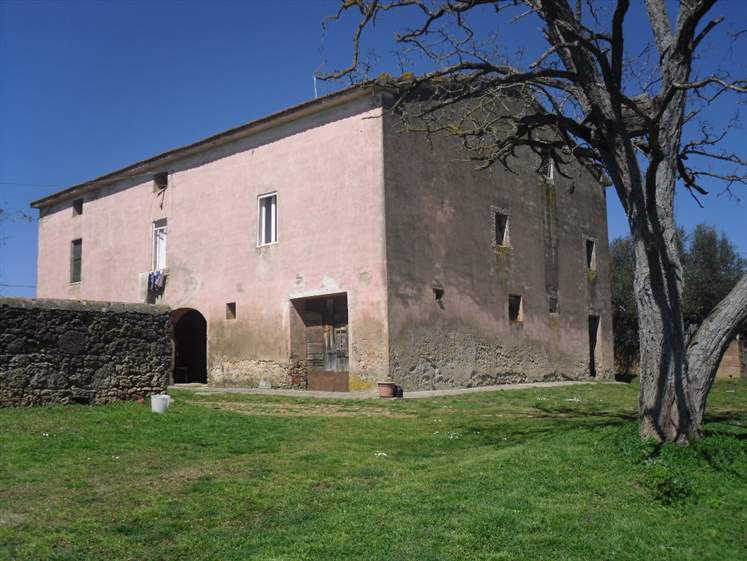 Azienda in Vendita a Massa Marittima: 600 mq