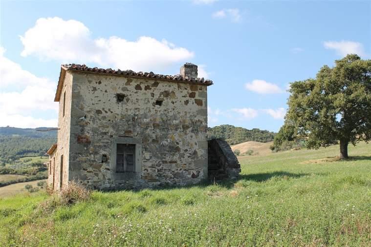 Azienda Agricola in vendita a Castiglione d'Orcia, 9999 locali, prezzo € 350.000 | Cambio Casa.it