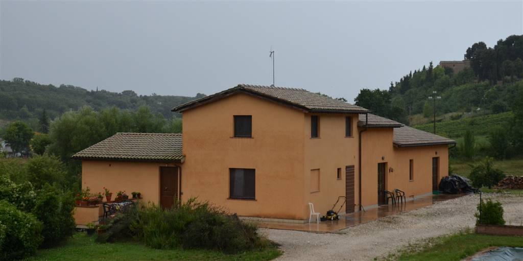 Azienda Agricola in vendita a San Quirico d'Orcia, 1 locali, Trattative riservate | Cambio Casa.it