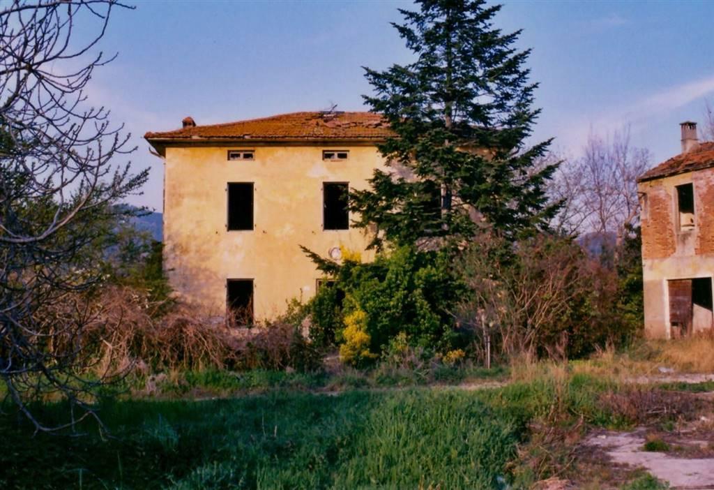 Azienda Agricola in Vendita a Massarosa