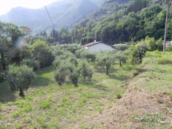 Terreno Agricolo in vendita a Camaiore, 9999 locali, zona Località: LOMBRICI, prezzo € 50.000 | Cambio Casa.it