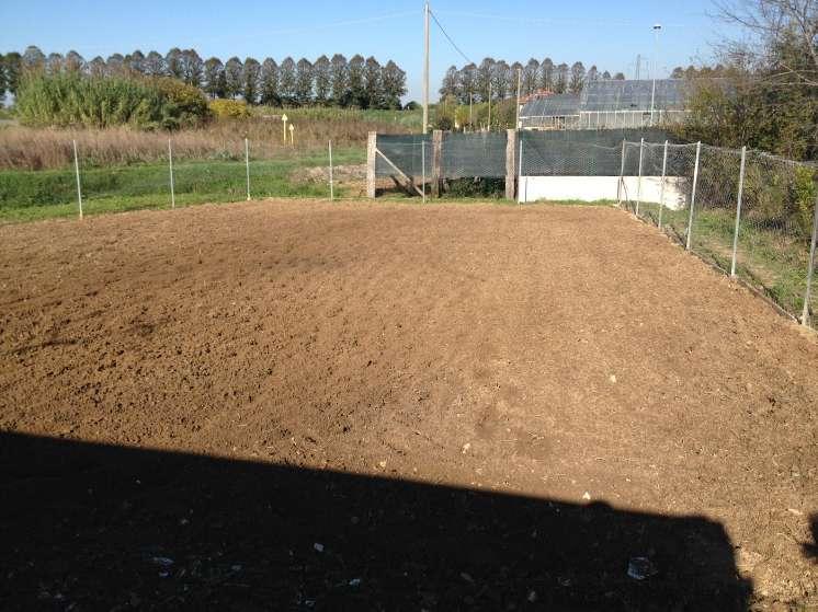Terreno Agricolo in vendita a Massarosa, 9999 locali, zona Zona: Piano di Mommio, prezzo € 35.000 | Cambio Casa.it