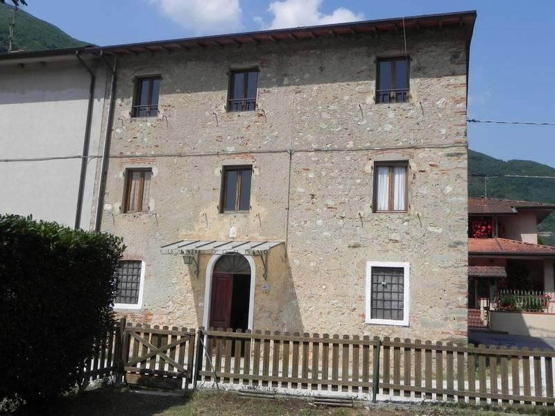 Terratetto, Camaiore