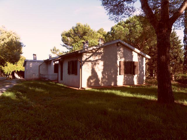 Casa singola, Baratti, Piombino, in ottime condizioni