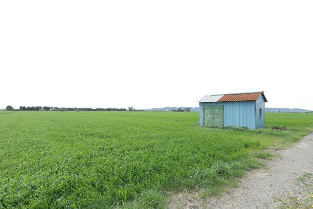Terreno Agricolo in Vendita a Piombino