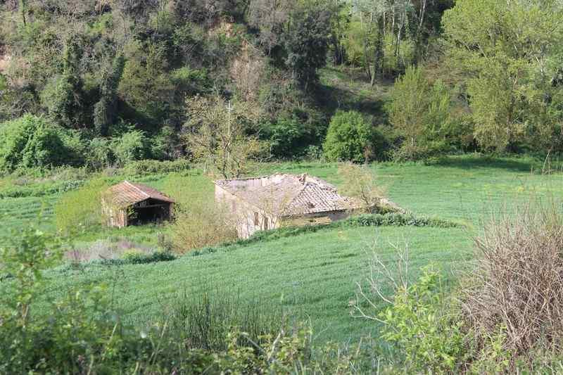 Rustico / Casale in vendita a Trequanda, 11 locali, zona Località: CRETE SENESI, prezzo € 195.000 | Cambio Casa.it