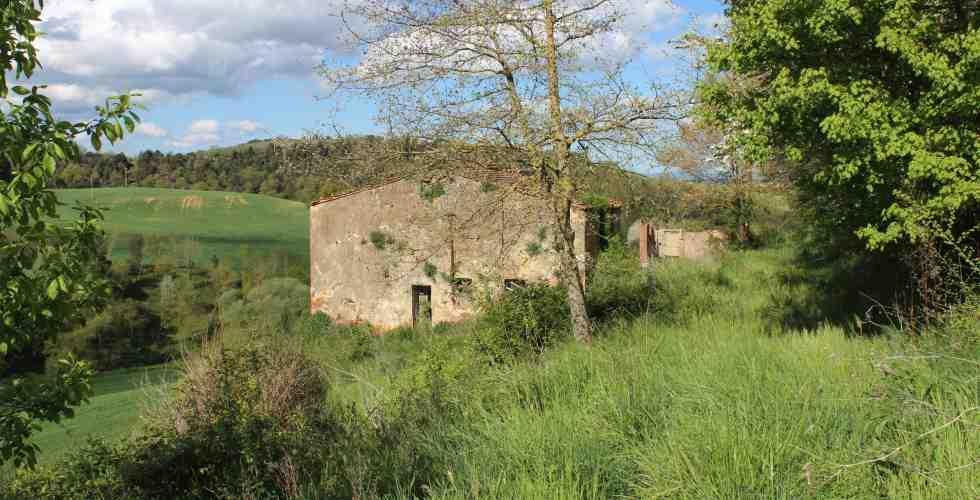 Rustico / Casale in vendita a Trequanda, 6 locali, zona Località: CRETE SENESI, prezzo € 160.000 | Cambio Casa.it