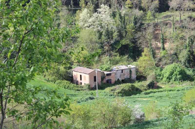 Rustico / Casale in vendita a Trequanda, 10 locali, zona Località: CRETE SENESI, prezzo € 185.000 | Cambio Casa.it