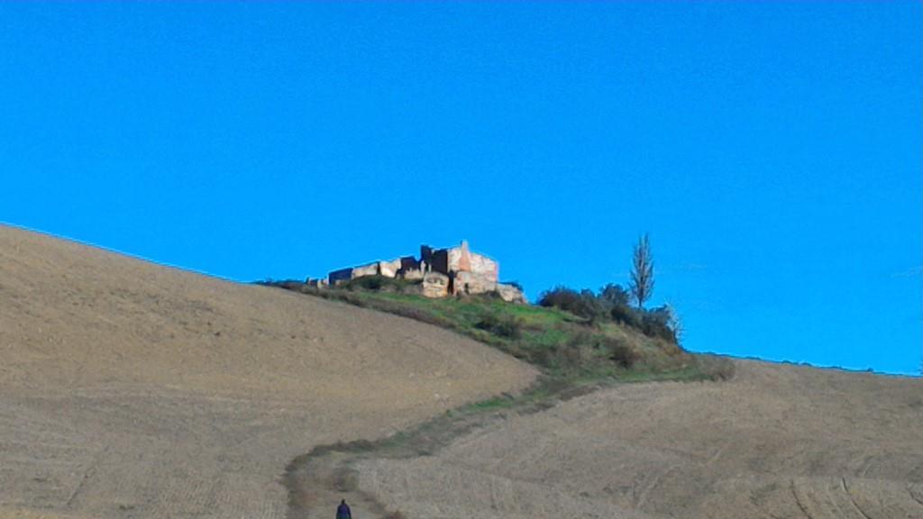 Rustico / Casale in vendita a Asciano, 20 locali, zona Località: CRETE SENESI, prezzo € 950.000 | Cambio Casa.it