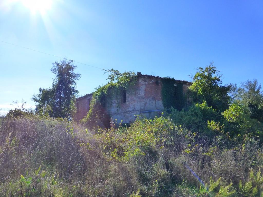 Rustico / Casale in vendita a Asciano, 15 locali, zona Località: CRETE SENESI, prezzo € 320.000 | Cambio Casa.it