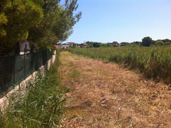 Terreno Agricolo in vendita a Terracina, 9999 locali, zona Località: BARCHI, prezzo € 25.000 | Cambio Casa.it