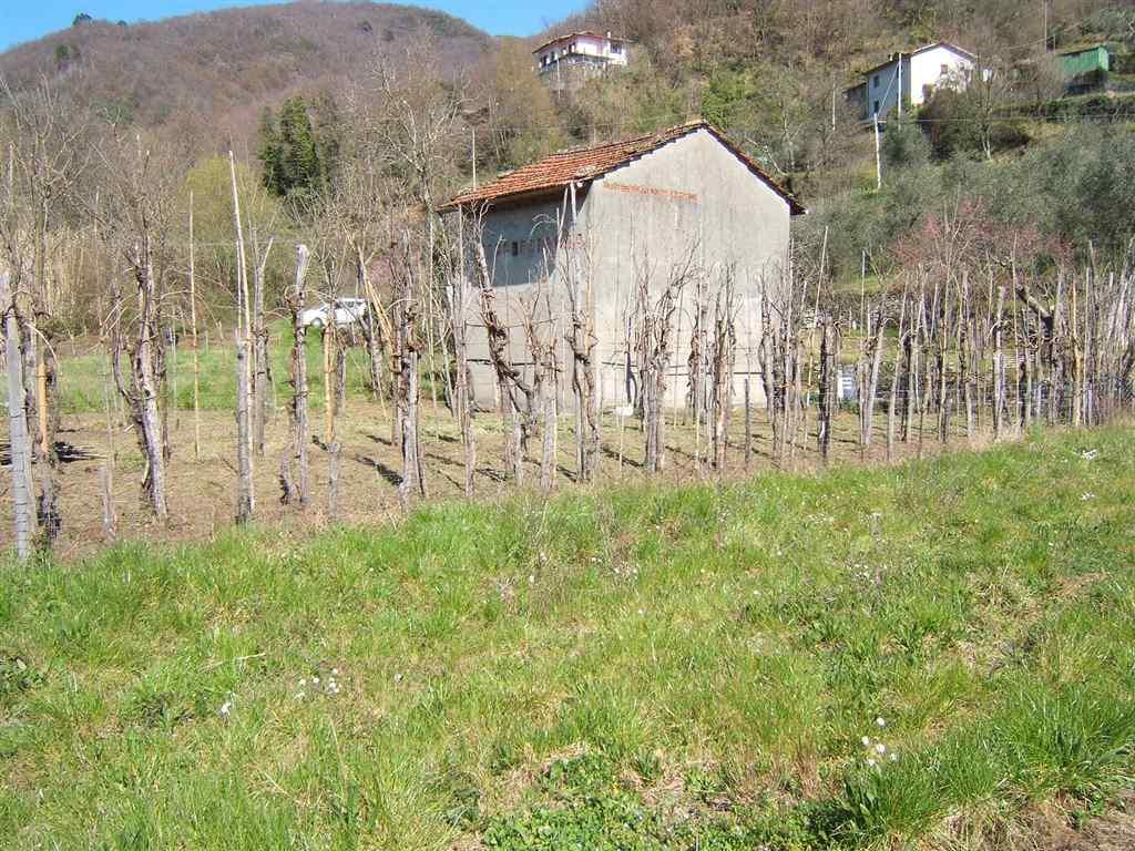 Rustico / Casale in vendita a Tresana, 3 locali, prezzo € 65.000 | Cambio Casa.it