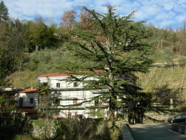 Rustico / Casale in vendita a Fivizzano, 10 locali, prezzo € 240.000 | Cambio Casa.it