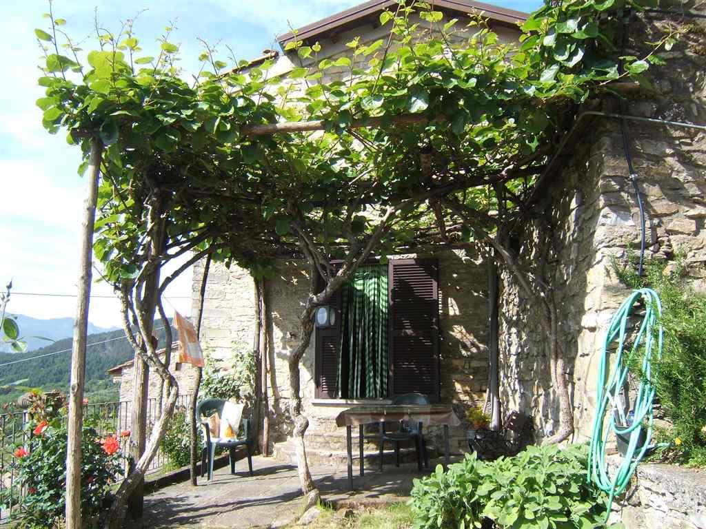 Soluzione Indipendente in vendita a Casola in Lunigiana, 8 locali, prezzo € 170.000 | CambioCasa.it