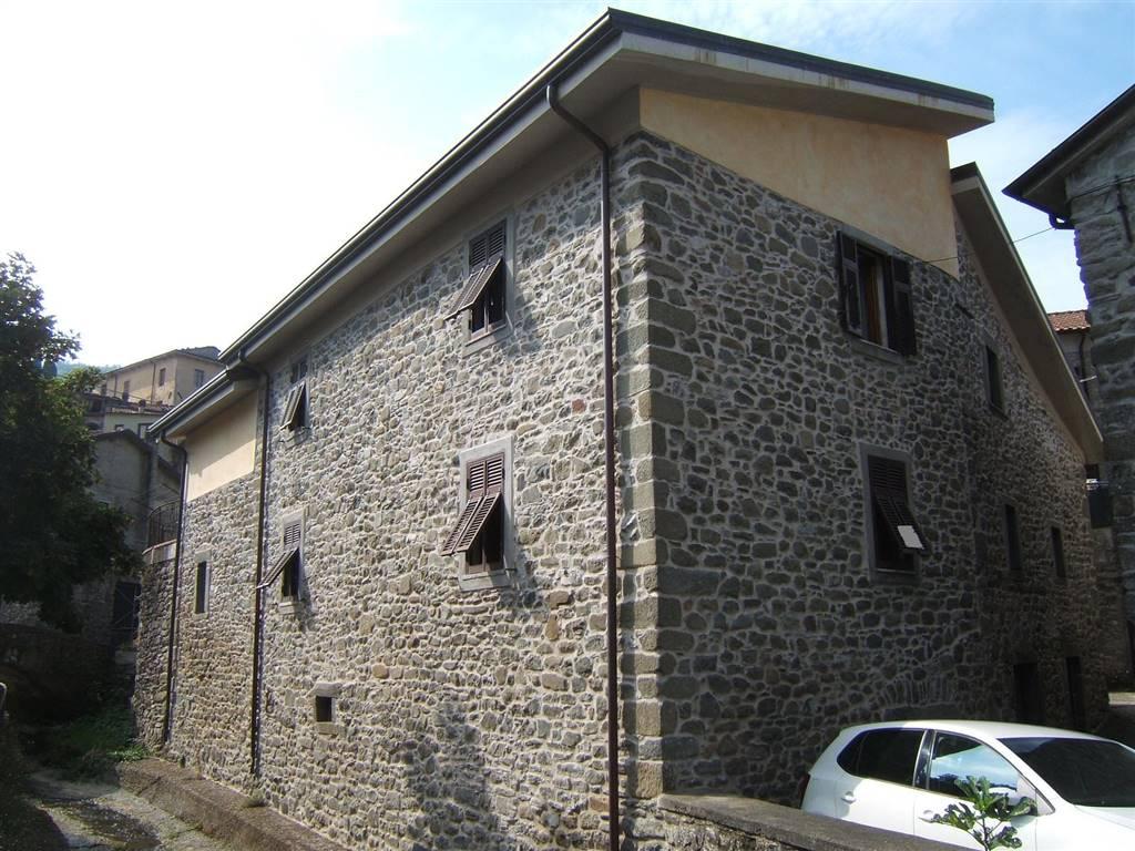 Soluzione Indipendente in vendita a Casola in Lunigiana, 6 locali, prezzo € 200.000 | CambioCasa.it