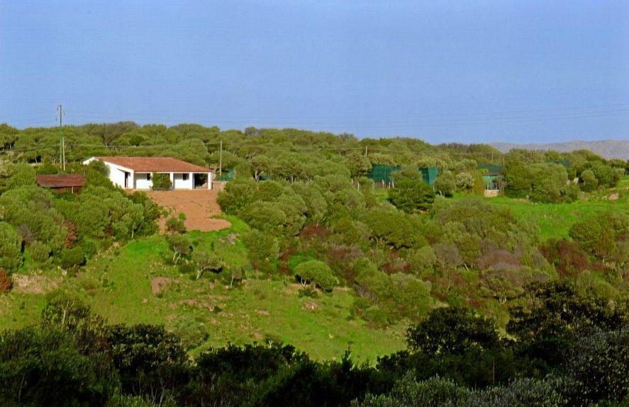 Villa in vendita a Palau, 7 locali, prezzo € 449.000 | Cambio Casa.it