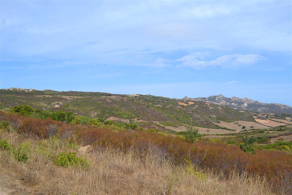 Terreno Agricolo in vendita a Arzachena - Porto Cervo, 9999 locali, prezzo € 340.000 | CambioCasa.it