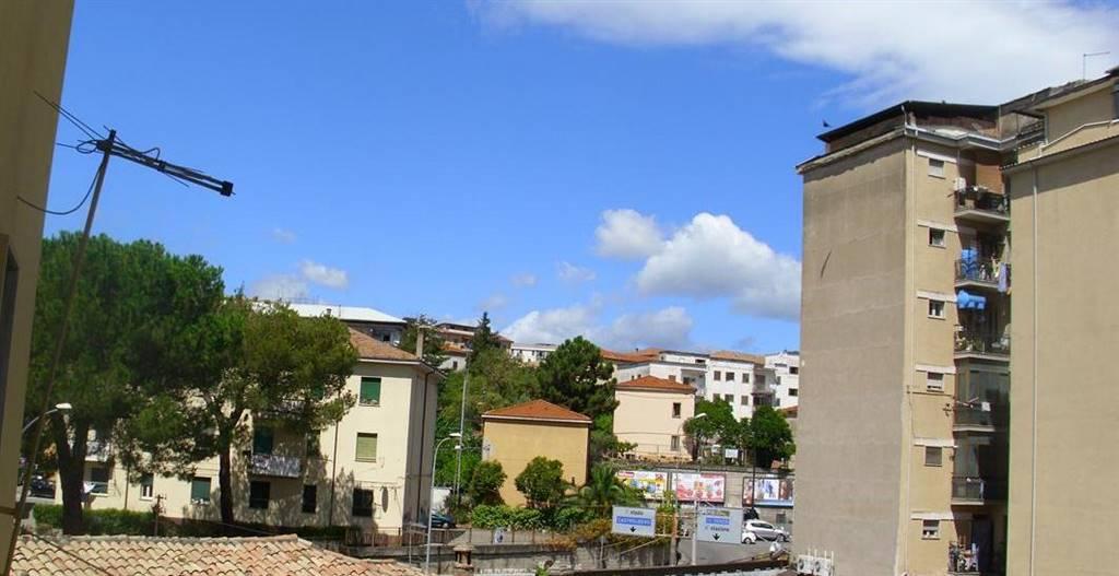 Appartamento  in Affitto a Cosenza