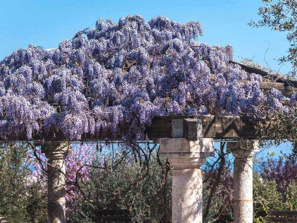 GAZEBO: Villa in Selva Di Fasano, Selva Di Fasano, Fasano