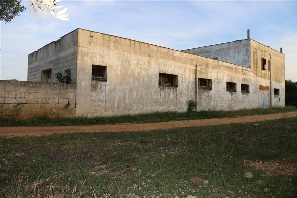 PROSPETTO LATERALE: Masseria in Rosa Marina, Ostuni