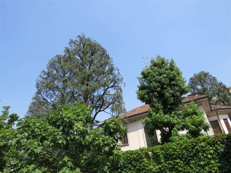 Villa in Vendita a Monza: 5 locali, 820 mq