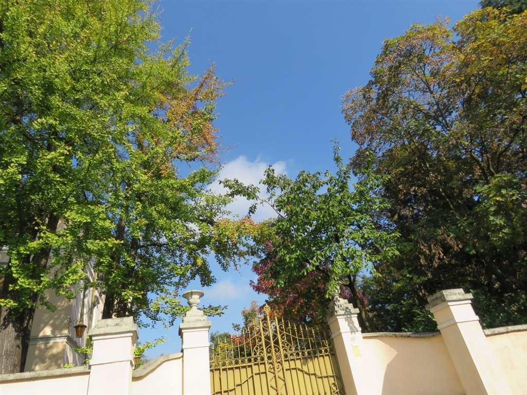 Villa in Vendita a Mezzago: 5 locali, 1350 mq