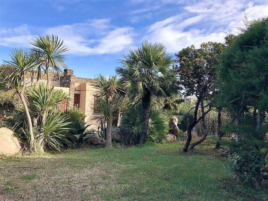 Villa in Vendita a Stintino: 5 locali, 200 mq