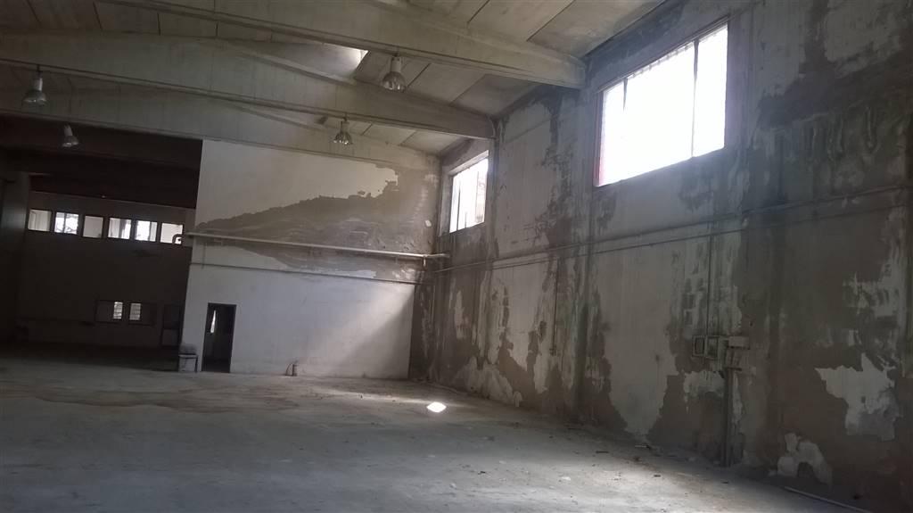 capannone Vendita Comacchio