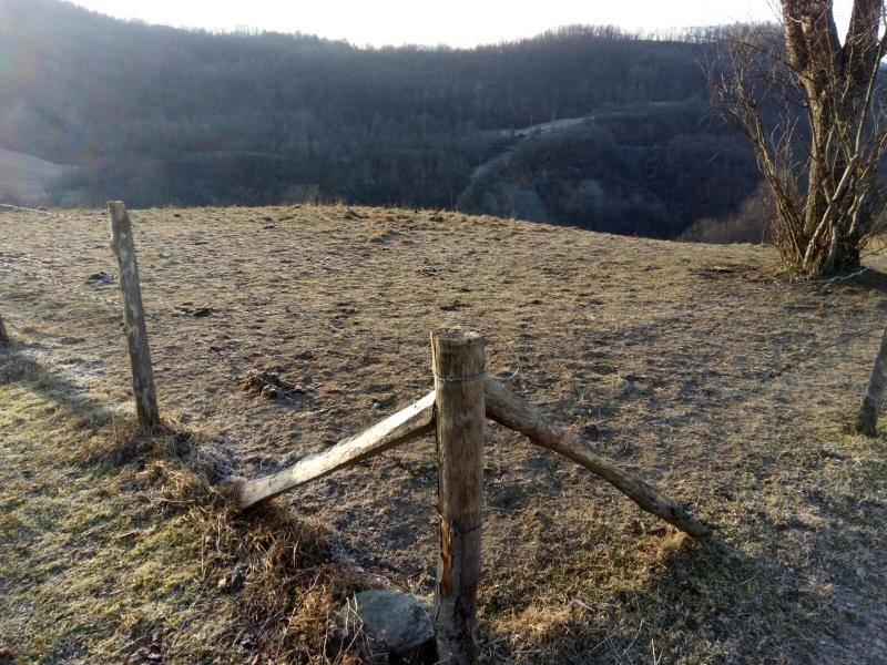 Terreno agricolo a FRASSINORO