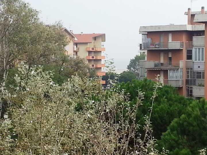 Trilocale, Lido Adriano, Ravenna, ristrutturato