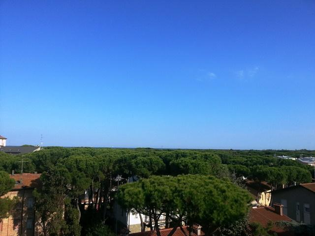 Trilocale, Punta Marina, Ravenna, in ottime condizioni