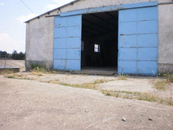 magazzino-deposito  in Affitto a Viterbo