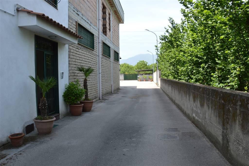 capannone Vendita Saviano