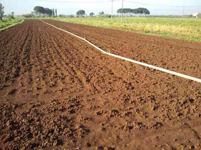 Terreno Agricolo in vendita a Sezze, 9999 locali, zona Località: SEZZE SCALO, prezzo € 60.000 | Cambio Casa.it