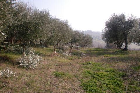 Soluzione Indipendente in vendita a Monte San Vito, 1 locali, prezzo € 240.000 | CambioCasa.it