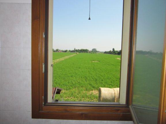 Appartamento Affitto Castelfranco Emilia