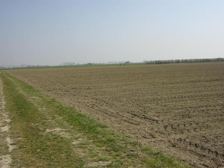 Terreno Agricolo in vendita a Salzano, 9999 locali, prezzo € 150.000 | Cambio Casa.it