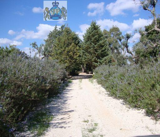 Stanze  in Affitto a San Vito Dei Normanni