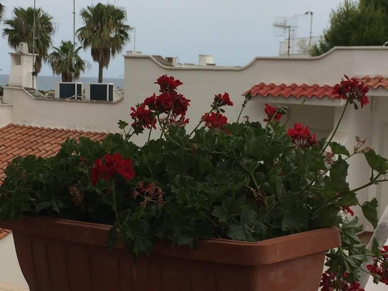 Soluzione Indipendente in vendita a Ostuni, 2 locali, zona Località: ROSA MARINA, prezzo € 99.000 | Cambio Casa.it