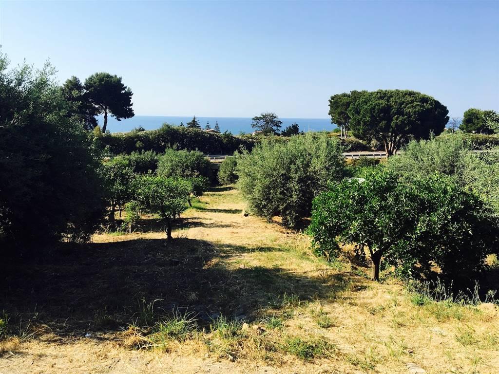 Villa in vendita a Campofelice di Roccella, 3 locali, prezzo € 75.000   CambioCasa.it